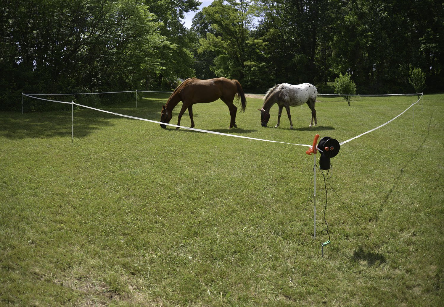 Portable Corral Powerfields High Quality Electric Fence